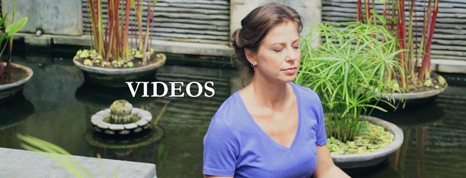 Transformative Wellness Videos